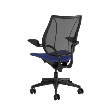 Liberty Task Chair, Monofilament Stripe Black Backrest, Corde 4 Thalo Seat Picture 3
