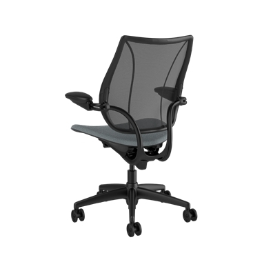 Liberty Task Chair, Monofilament Stripe Black Backrest, Corde 4 Medium Gray Seat Picture 3