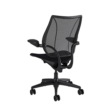 Liberty Task Chair, Monofilament Stripe Black Backrest, Fourtis Black Seat Picture 3