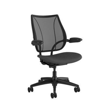 Liberty Task Chair, Monofilament Stripe Black Backrest, Fourtis Granite Seat