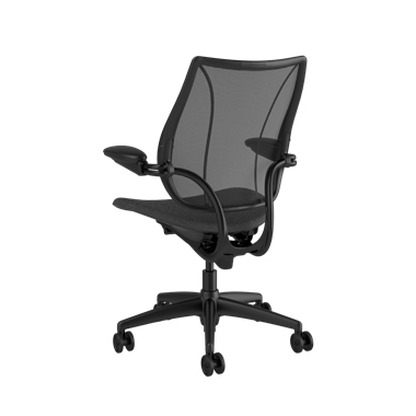 Liberty Task Chair, Monofilament Stripe Black Backrest, Fourtis Granite Seat Picture 3